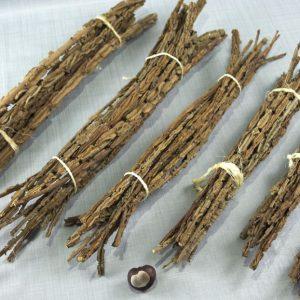 Bundels van verschillende lengtes van takken van de gladde iep.