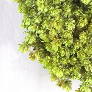 Close-up van een krans gemaakt van lichtgroene hopbellen.