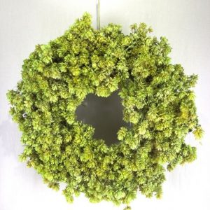 Deco krans gemaakt van lichtgroene hopbellen.