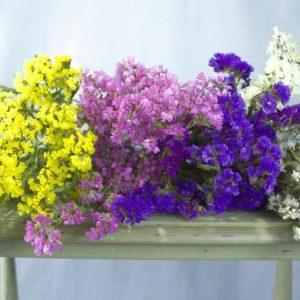 Droogboetten van lamsoor in geel, paars, blauw en wit op grijs tafeltje