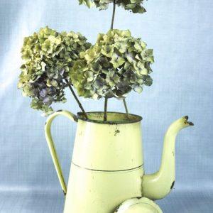 Drie takken met gedroogde bloemen van Hortensia in vintage witte kan